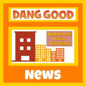 Steam Cleaning in Apartments